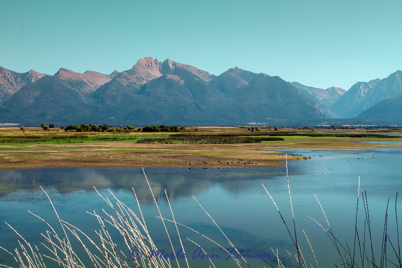 Mission Mountains from Ninepipe NWR - color.