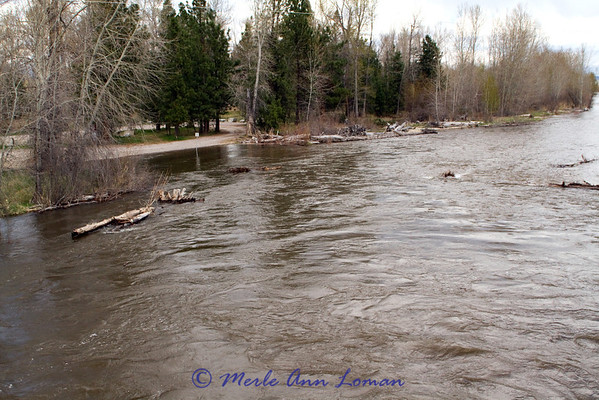 2012 spring runoff has begun in Bitterroot River late April