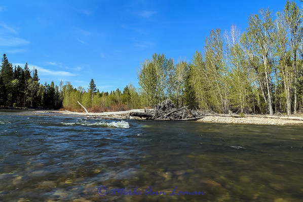 West Fork of Bitterroot River