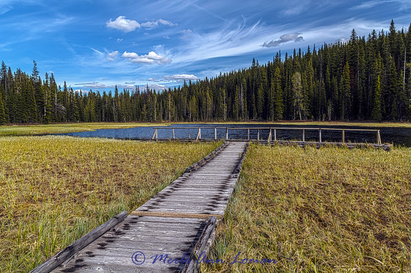 Mud Lake in June - Skalkaho Highway, Montana IMG_0470  ¯\_(ツ)_/¯ Please share and like the A Montana View Facebook page! Thanks so much for viewing.   visit www.amontanaview.com   #Photography #Montana #MontanaMoment #MudLake - Buy this photo at this link http://smu.gs/1BYUApF