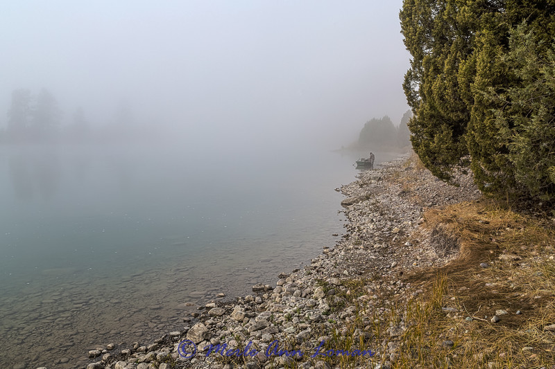 Flathead River in the fog
